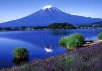 Oishi Park to See Lake Kawaguchi & Mt Fuji
