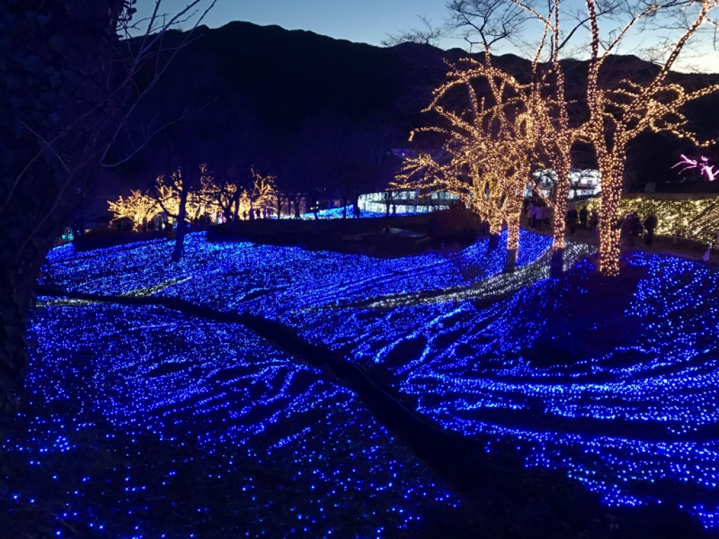 Enjoy Beautiful Winter Illumination & View Mt Fuji from Kawaguchi 0