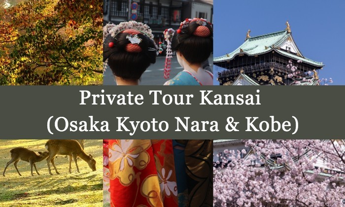 4D3N Cheap Private Land Tour Kansai (Osaka Kyoto Nara & Kobe)