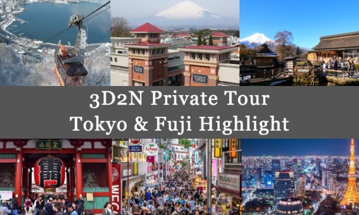 3D2N Cheap Private Land Tour Tokyo & Fuji