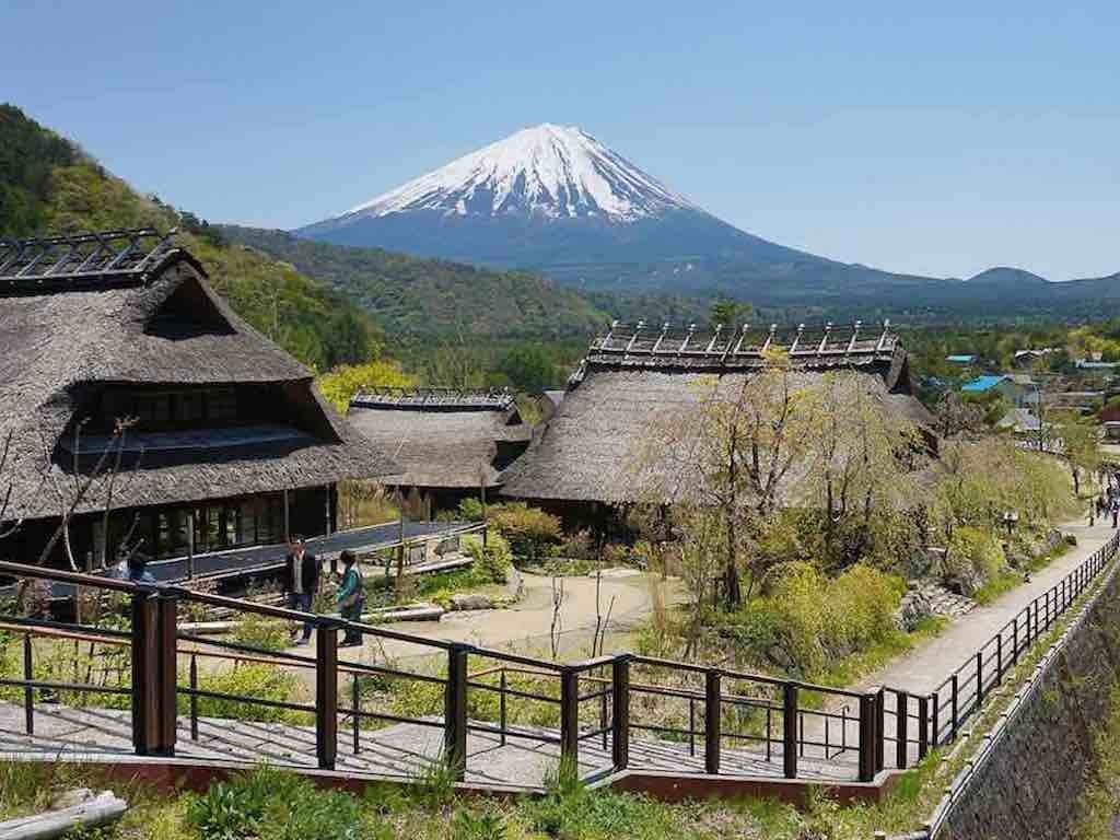 3D2N Cheap Private Land Tour Tokyo & Fuji 0