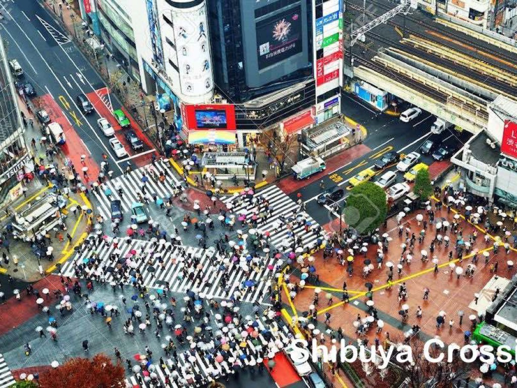 3D2N Cheap Private Land Tour Tokyo & Fuji 2