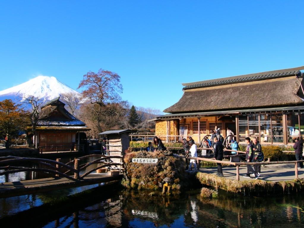3D2N Cheap Private Land Tour Tokyo & Fuji 5