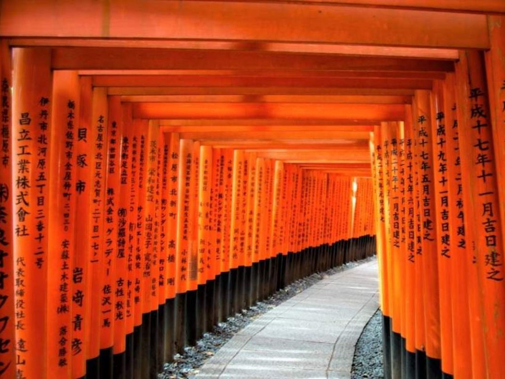 4D3N Cheap Bus Land Tour Package in Osaka Kyoto Nara & Kobe 5