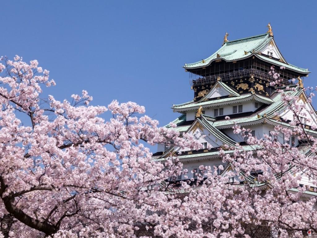 4D3N Cheap Bus Land Tour Package in Osaka Kyoto Nara & Kobe 1
