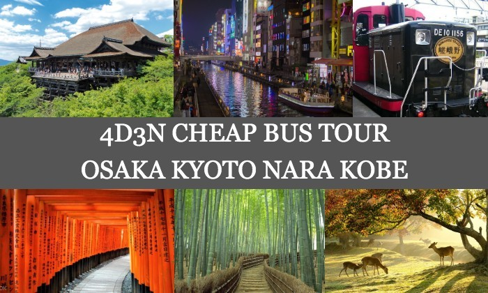 4D3N Cheap Bus Land Tour Package in Osaka Kyoto Nara & Kobe