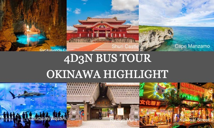 4D3N Cheap Bus Land Tour Package in Okinawa