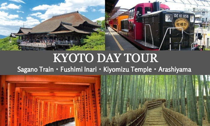 Day Tour to Kyoto from Osaka with Sagano Romantic Train