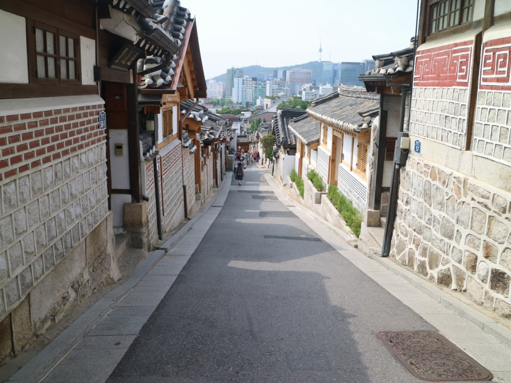 Traveling and Shopping in Seoul City Day Trip 6