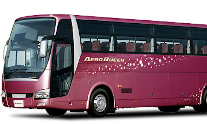 Okinawa Large Bus