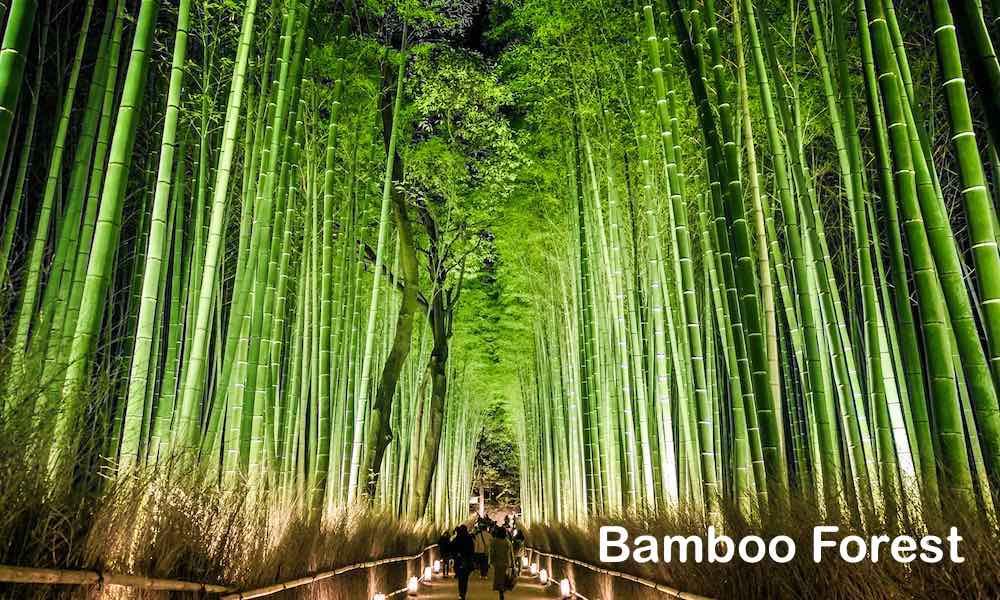 Arashiyama 0