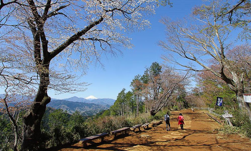 Climbing Mount Takao